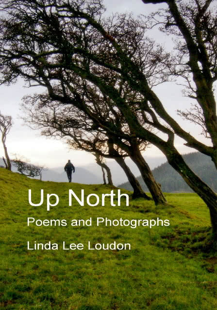 Up North Front Cover WSE